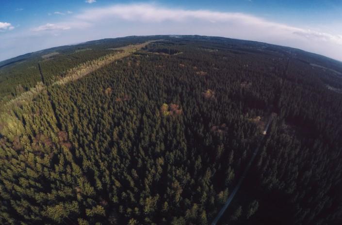 Luftaufnahme Quadcopter Drohne GoPro Aerial Ebersberger Forst