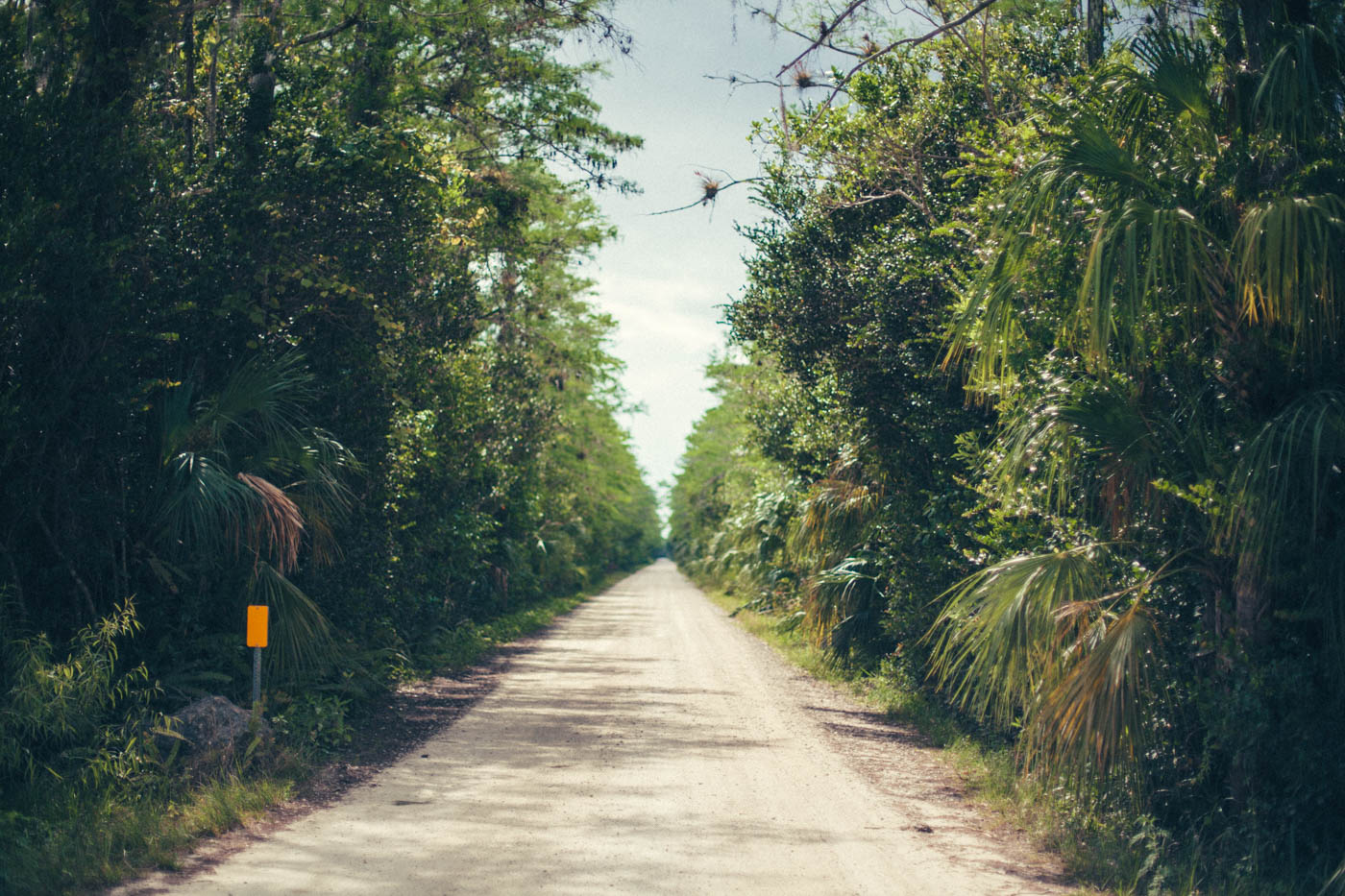 Florida Part 2: Die Everglades und die Golfküste - Der zweite Teil unseres Roadtrips führte uns durch die Everglades bis hin zur südlichen Golfküste - Thomas Brand Sarah Bugar - brand4art Ebersberg München - Fotografie Cinemagraph Fotograf Fotodesign